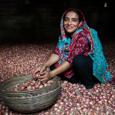 Seeds for a Woman Farmer