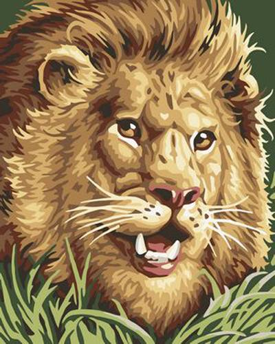 Animal Lion Diy Paint By Numbers Kits ZXB263