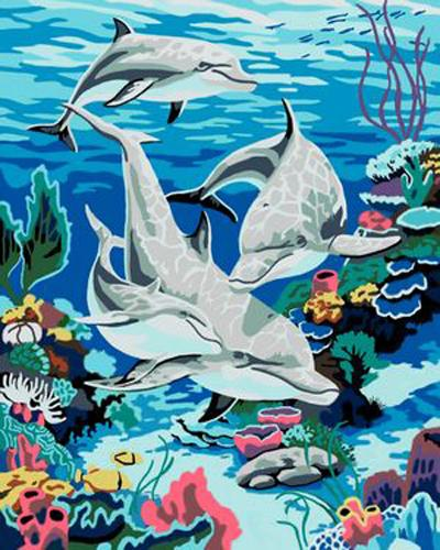 Dolphin Diy Paint By Numbers Kits ZXB347