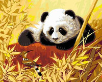Panda Diy Paint By Numbers Kits ZXB348