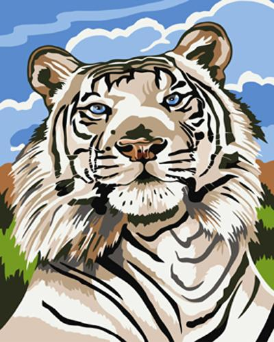 Animal Tiger Diy Paint By Numbers Kits ZXB411
