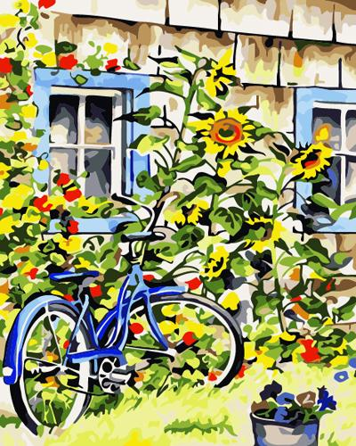 Bicycle Diy Paint By Numbers Kits ZXB546