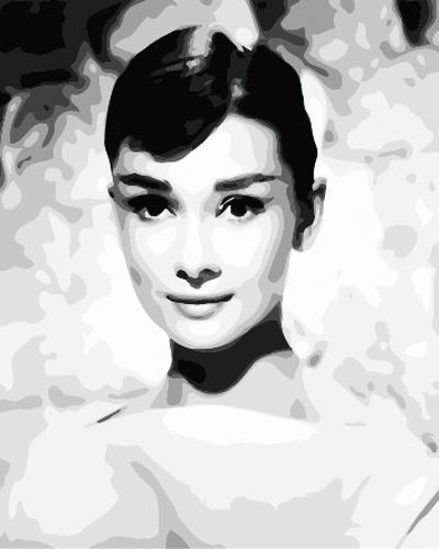 Audrey Hepburn Diy Paint By Numbers Kits ZXB699-9