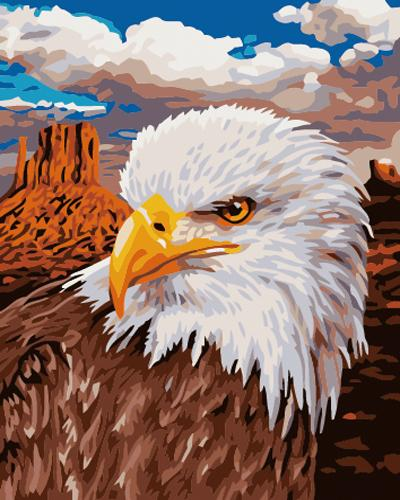 Eagle Diy Paint By Numbers Kits ZXB729