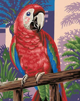 Parrot Diy Paint By Numbers Kits ZXB760