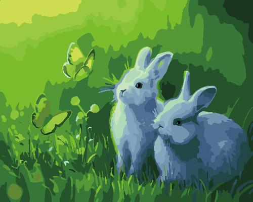 Animal Rabbit Diy Paint By Numbers Kits ZXB846