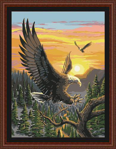 Eagle Diy Paint By Numbers Kits ZXE096