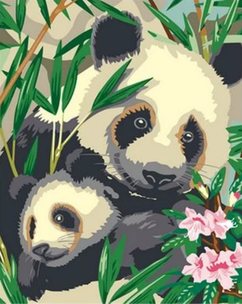 Panda Diy Paint By Numbers Kits ZXQ2214