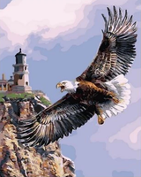 Eagle Diy Paint By Numbers Kits ZXQ2468