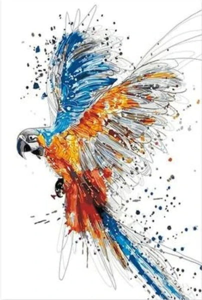 Parrot Diy Paint By Numbers Kits BN92709