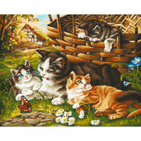 Cats Diy Paint By Numbers Kits PBN95506