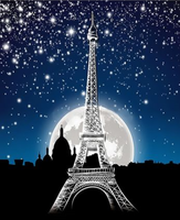 Landscape Eiffel Tower Diy Paint By Numbers Kits ZXQ3543