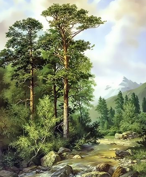 Landscape Forest Diy Paint By Numbers Kits ZXQ3981