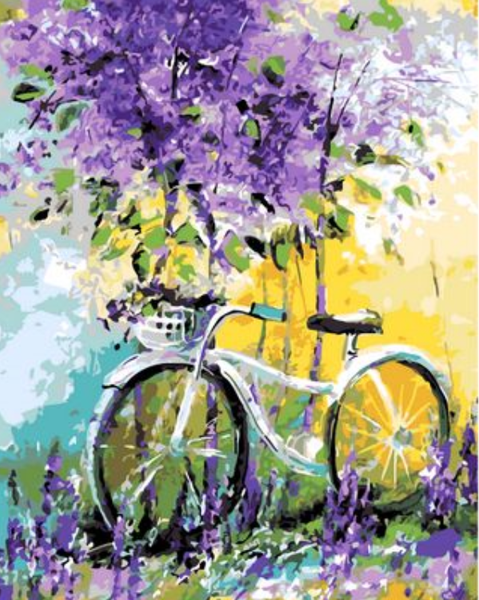 Bicycle Diy Paint By Numbers Kits ZXQ765