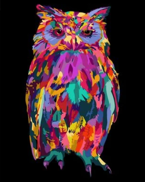 Color Animal Owl Diy Paint By Numbers Kits ZXQ2573