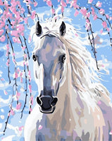 Horse Diy Paint By Numbers Kits WM-033