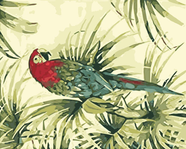 Parrot Diy Paint By Numbers Kits WM-1330