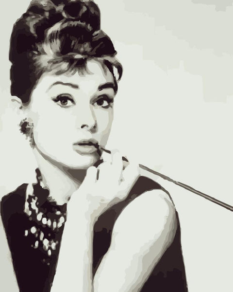 Audrey Hepburn Diy Paint By Numbers Kits WM-1713