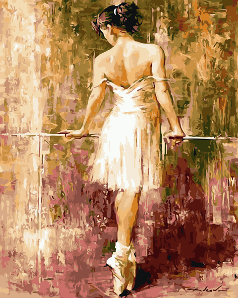 Dancer Diy Paint By Numbers Kits WM-711