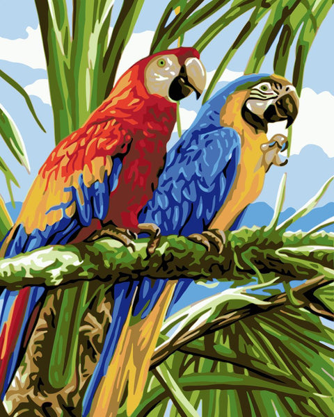 Parrot Diy Paint By Numbers Kits WM-912