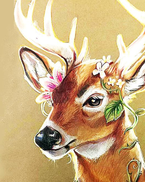 Deer Diy Paint By Numbers Kits YM-4050-254