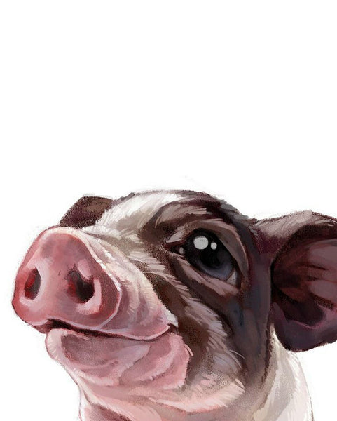 Pig Diy Paint By Numbers Kits YM315