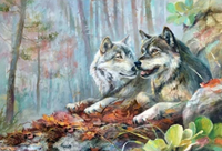 Wolf Diy Paint By Numbers Kits VM90229
