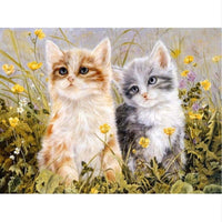 Pet Cat Diy Paint By Numbers Kits PBN90607