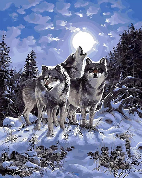 Animal Wolf Diy Paint By Numbers Kits PBN91628