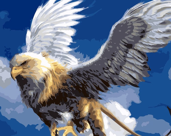 Eagle Diy Paint By Numbers Kits PBN92833