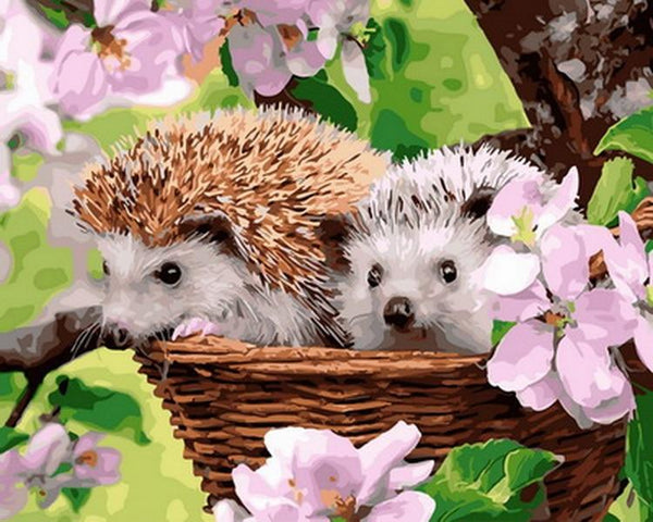 Hedgehog Diy Paint By Numbers Kits VM30136