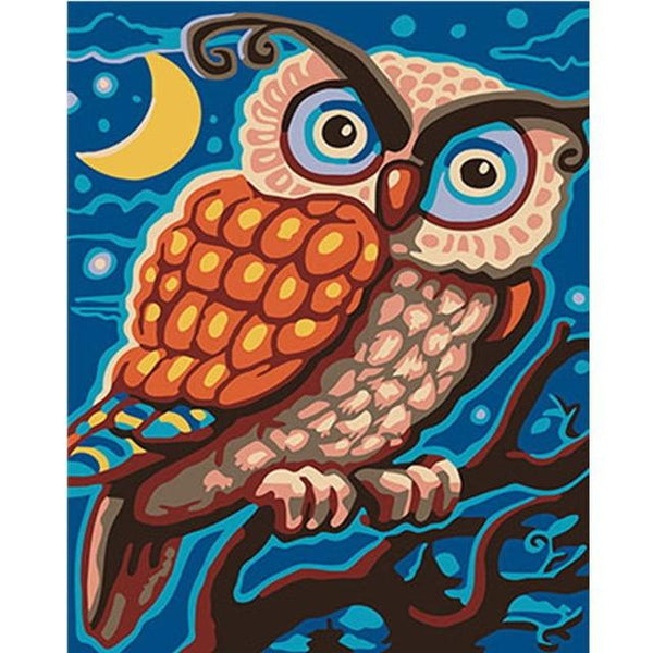 Colorful Owl Diy Paint By Numbers Kits PBN91194