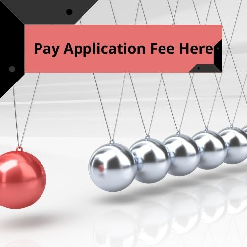 Momentum Application Fee