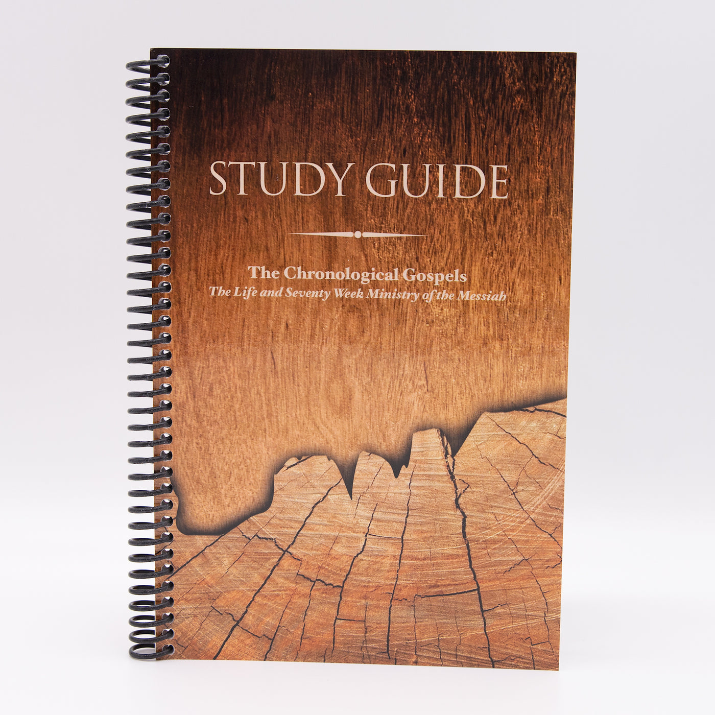 The Chronological Gospels Study Guide