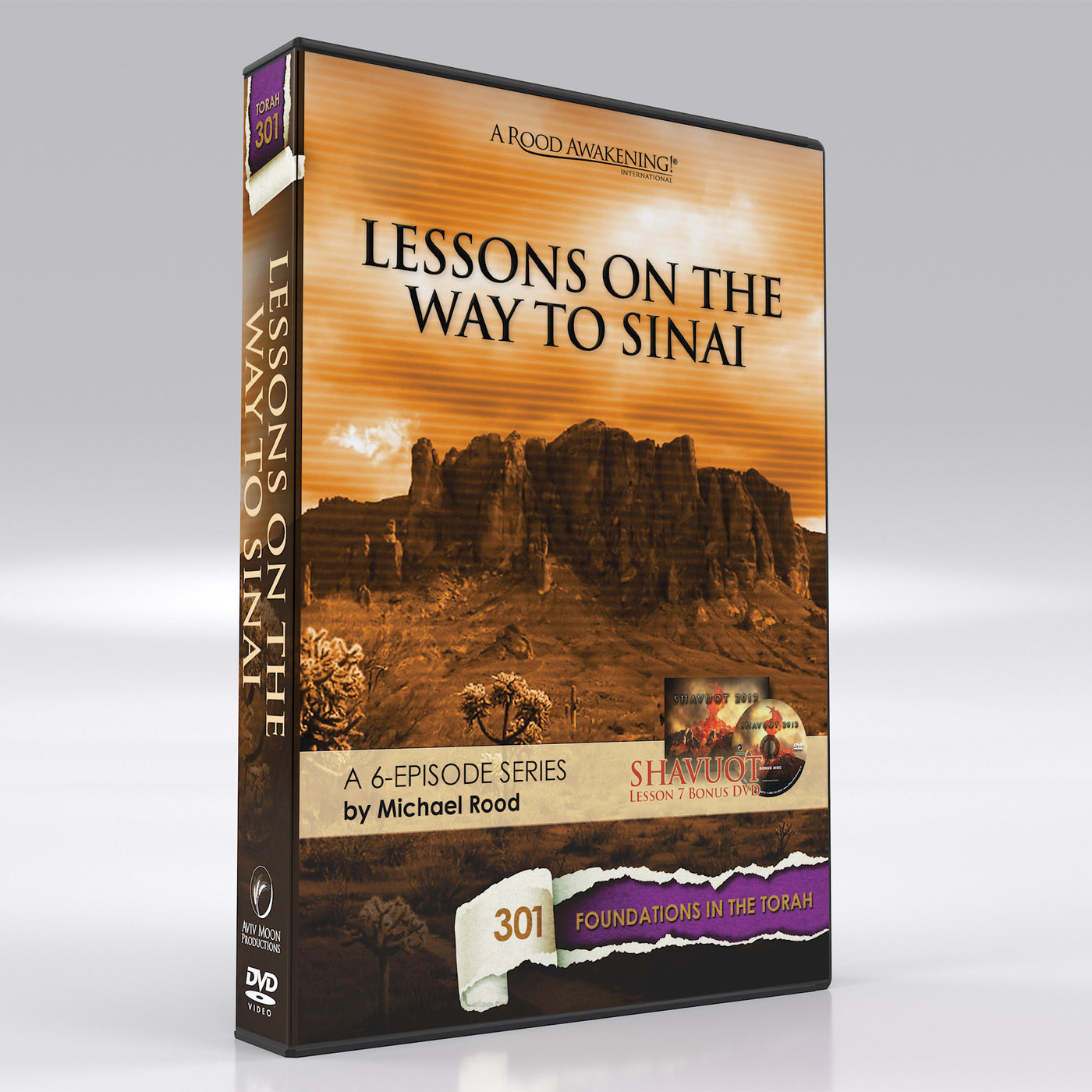 Lessons on the Way to Sinai