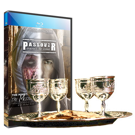 Picture of April Love Gift: Passover - Ephraim's Last Chance Collection