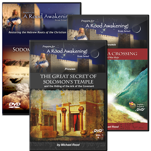 Biblical Archaeology Bundle