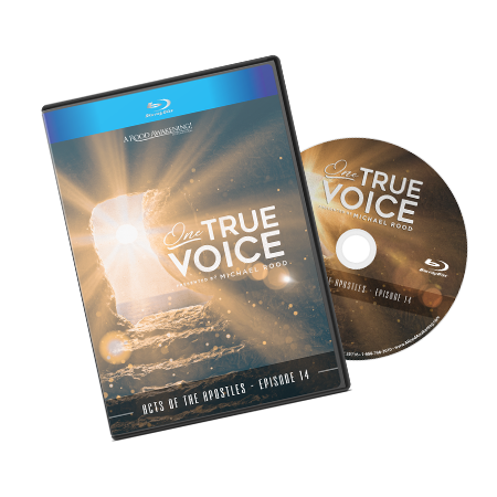 "Picture of December 2018 Love Gift: ""One True Voice"""