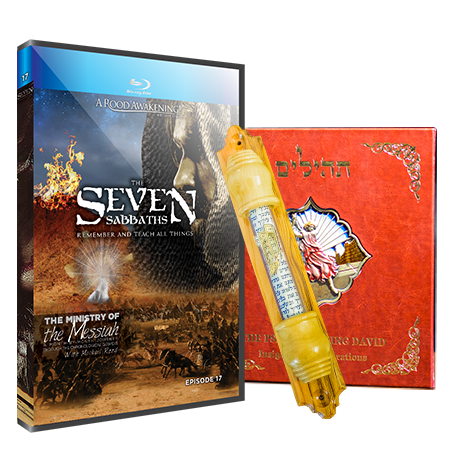 Picture of BONUS! May Love Gift: The Seven Sabbaths SPECIAL OFFER