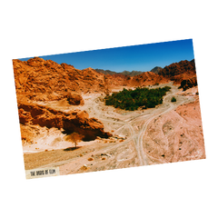 "Mt. Sinai Poster - ""The Oasis of Elim"" (24x36)"