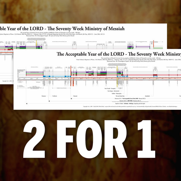 "The Chronological Gospels 70-Week Timeline Chart (12"" x 47.25"") - BUY ONE GIVE ONE (July 2020)"