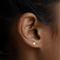 A right ear with white circles which highlight each position that the ear can be pierced at the London piercing studio