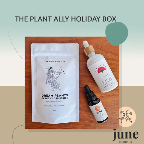 'PLANT ALLY' Holiday Box