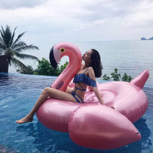 Load image into Gallery viewer, Flamingo Pool Floaty