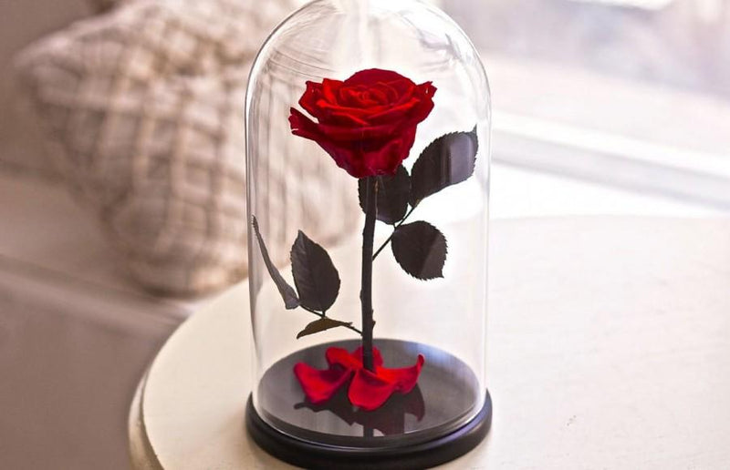 What is forever rose, eternal rose or preserved flower?