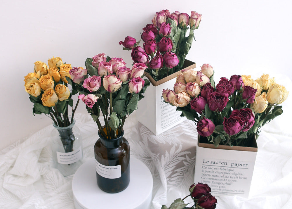 Difference between preserved flowers, dried flowers and fresh flowers