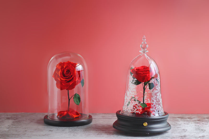 magic rose bluetooth speaker