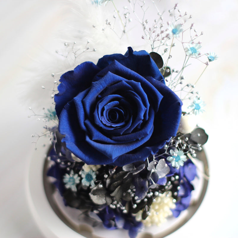 Mini Rose Dark Blue|Forever Rose|Eternal Rose|Preserved Flower|Léselle