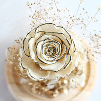 Mini Rose (White)|Forever Rose|Eternal Rose|Preserved Flower