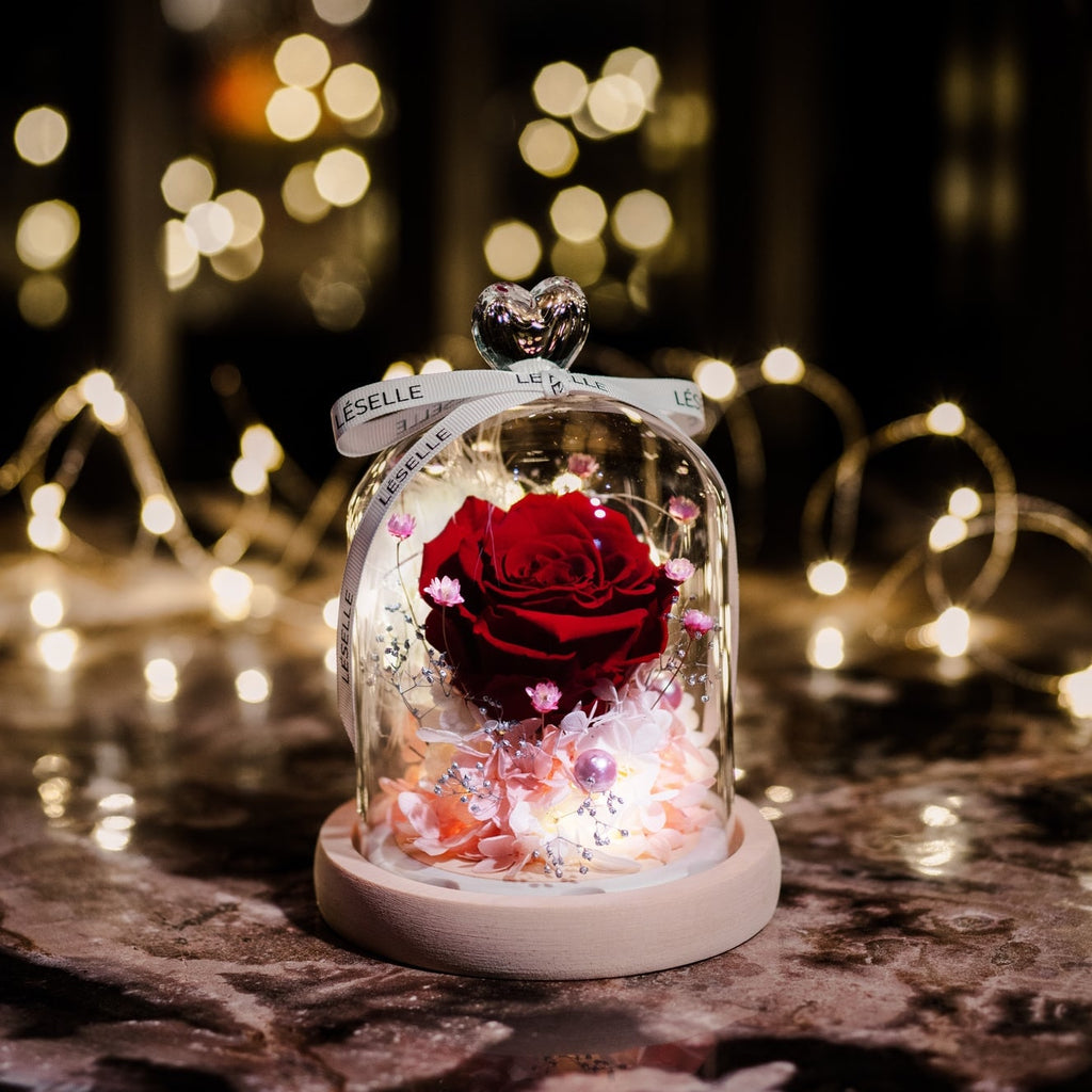 Mini Preserved Rose in Glass Dome 紅玫瑰永生花保鮮花擺設